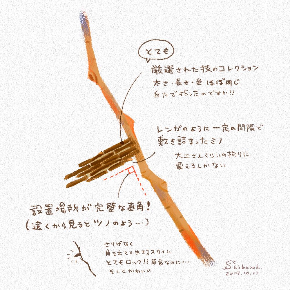 ミノムシ(スケッチ)