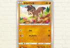 ポケモンカードゲーム「ドロバンコ」