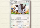 ポケモンカードゲーム「バイウールー」